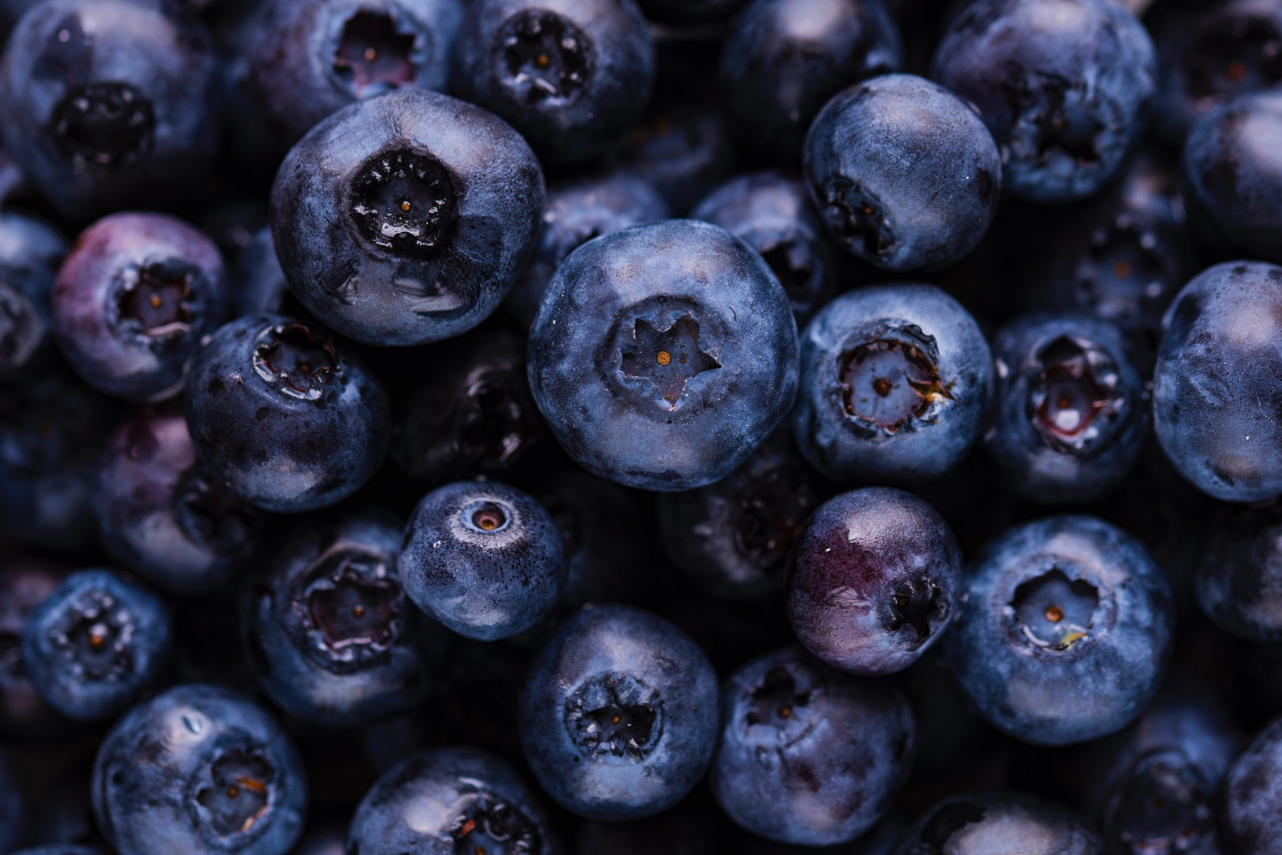 why-you-should-eat-these-foods